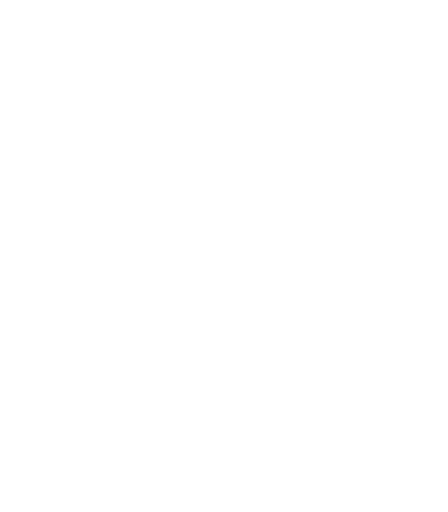 10_shield_protection_512